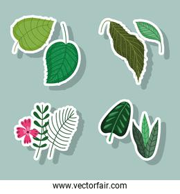 leaves flower branch nature foliage floral cartoon icons stickers