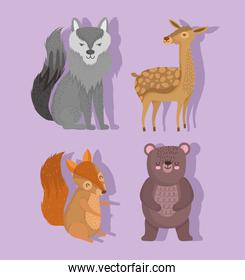 cute wolf reindeer squirrel and bear animal with stars in cartoon design