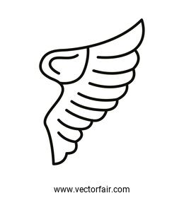 wing bird open style line icon