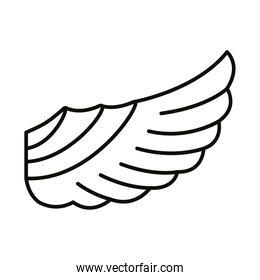 wing feathers bird style line icon