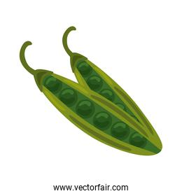 fresh beans vegetable healthy food icon