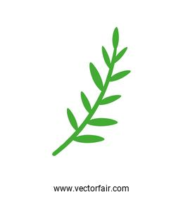 branch with leafs nature icon