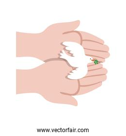 hands lifting dove bird flying peace icon