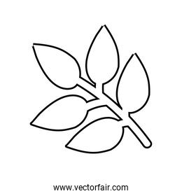 branch with leafs nature line style icon
