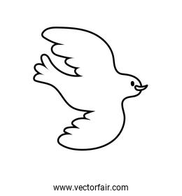 dove bird flying peace line style icon