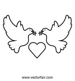 doves birds flying with heart line style icon