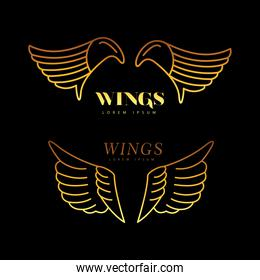 golden wings feathers birds line style icons