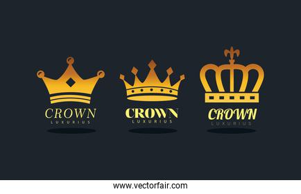 bundle of four golden crowns royal silhouette style icons