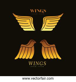 golden wings feathers birds silhouette style icons