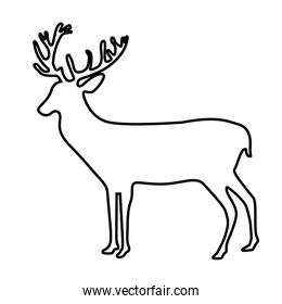 deer animal forest wild in line style icon
