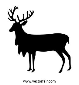 deer animal forest wild in silhouette style icon