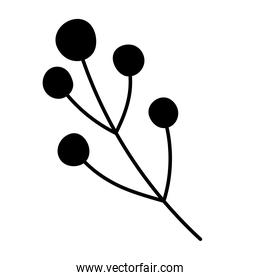 branch and berries foliage natural ornament silhouette