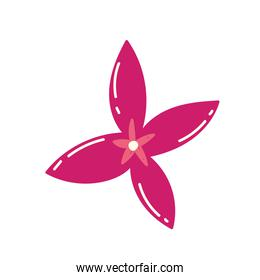 pink flower petals nature decoration icon design
