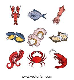 seafood lobster squid fish crab octopus oysters menu gourmet fresh icon isolated image