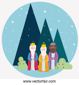 happy epiphany, three wise kings night starry landscaping