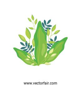 beautiful green leaves icon, colorful design