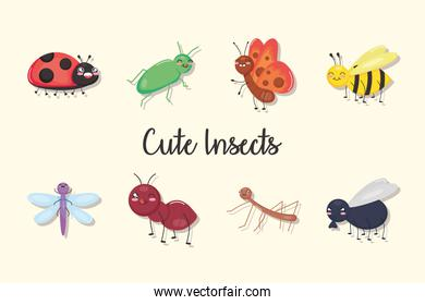 cute insects icon set, colorful design