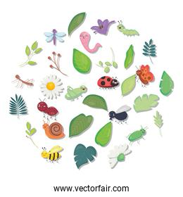 cute insects with flowers and leaves, colorful design