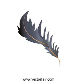 feather fluff allegory decoration icon