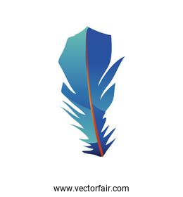 blue feather decoration with gradient tone color icon