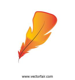 feather nature object decoration icon