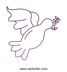 peace dove with olive branch flying line style icon