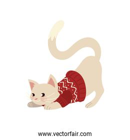 christmas, cute cat with sweater and ball animal celebration isolated design