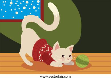 christmas cute cat with sweater in the house