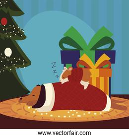 merry christmas dog and hamster with sweater sleeping next to tree and gifts