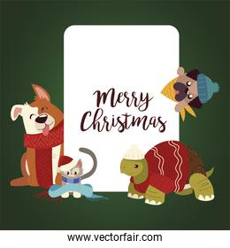 merry christmas greeting card with cute animals wearing winter clothes