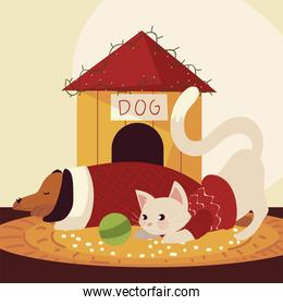 merry christmas cute dog and cat with sweater and house