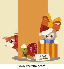 merry christmas little cat in gift box with turtle and dog cartoon
