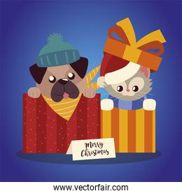 merry christmas cute cat and dog in boxes cartoon