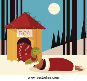 merry christmas turtle in house and sleeping dog in the snow scene