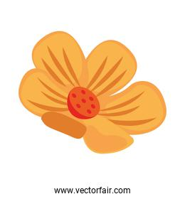 beautiful flower yellow decoration garden icon