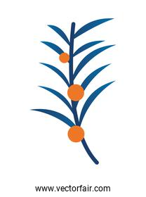 plant with seeds ecology icon