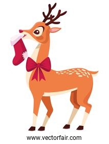 cute christmas deer with bow and sock