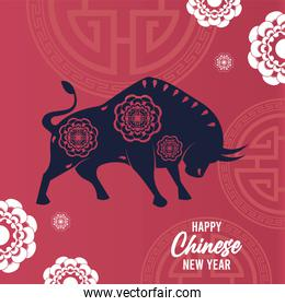 happy chinese new year lettering card with ox