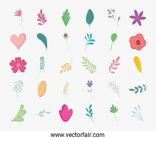 flowers and leaves icon set, colorful design