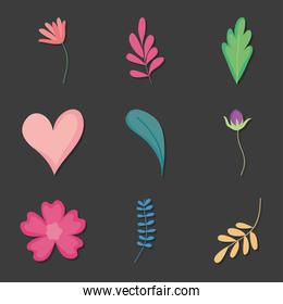 icon set of flowers and leaves, colorful design