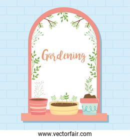 gardening design with window with plants, colorful design