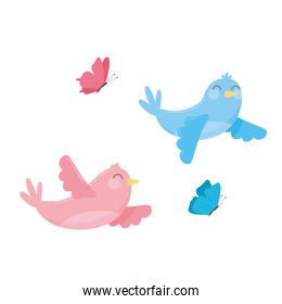 cute flying birds and butterflies cartoon white background