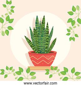 plant inside pot with leaves around vector design