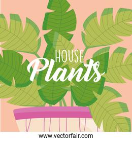 house plants text in front of plant inside purple pot vector design