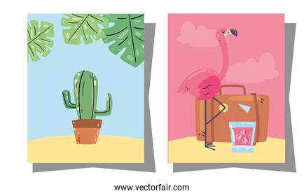 Summer cactus flamingo and bag in frames vector design