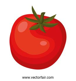 tomato with a red color isolated icon