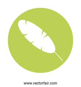 oblong leaf plant silhouette style icon