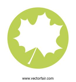 webbed form leaf plant silhouette style icon
