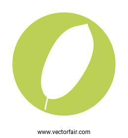 ovate form leaf plant style silhouette icon