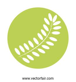 pinnate leaf plant style silhouette icon